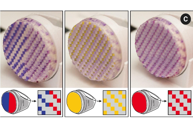 マサチューセッツ工科大学の研究チームがリカラー可能な3Dプリンティング技術を開発