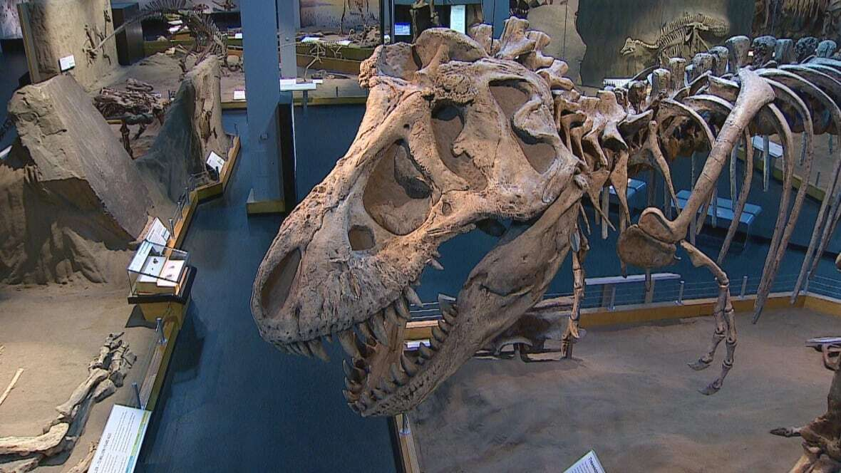 カナダの博物館が3Dプリンターでティラノサウルスの化石のレプリカを製造
