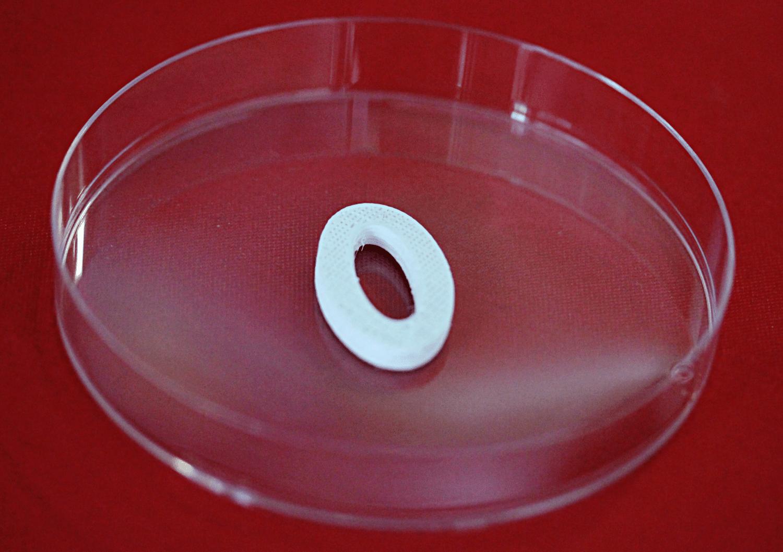 医療3Dプリンティング用素材メーカーのディメンション・インクスが317万ドルの資金調達に成功