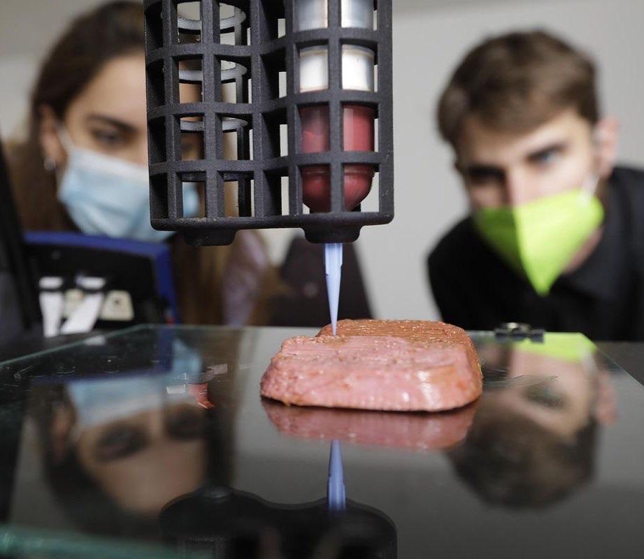 スペインのノバミートが世界最大サイズの人造肉の製造に成功