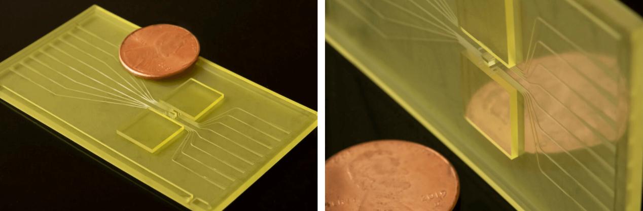 BMFがCOVID-19テストに使用された3Dプリティングモデル製作の事例を公開